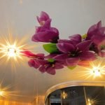 Подсветка потолка с изображением орхидеи