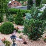 Ландшафтный дизайн с применением хвойных растений