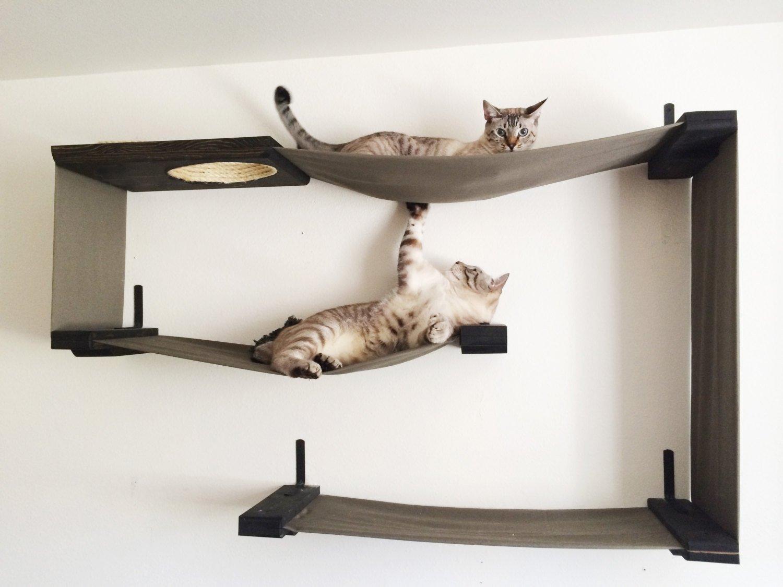 Комплекс для кошки своими руками пошаговое фото 452