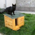 Черный кот на будке