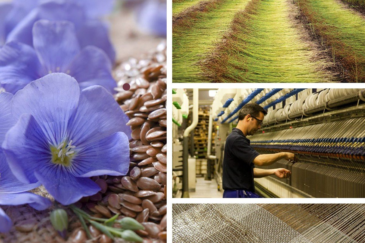 История производства льна