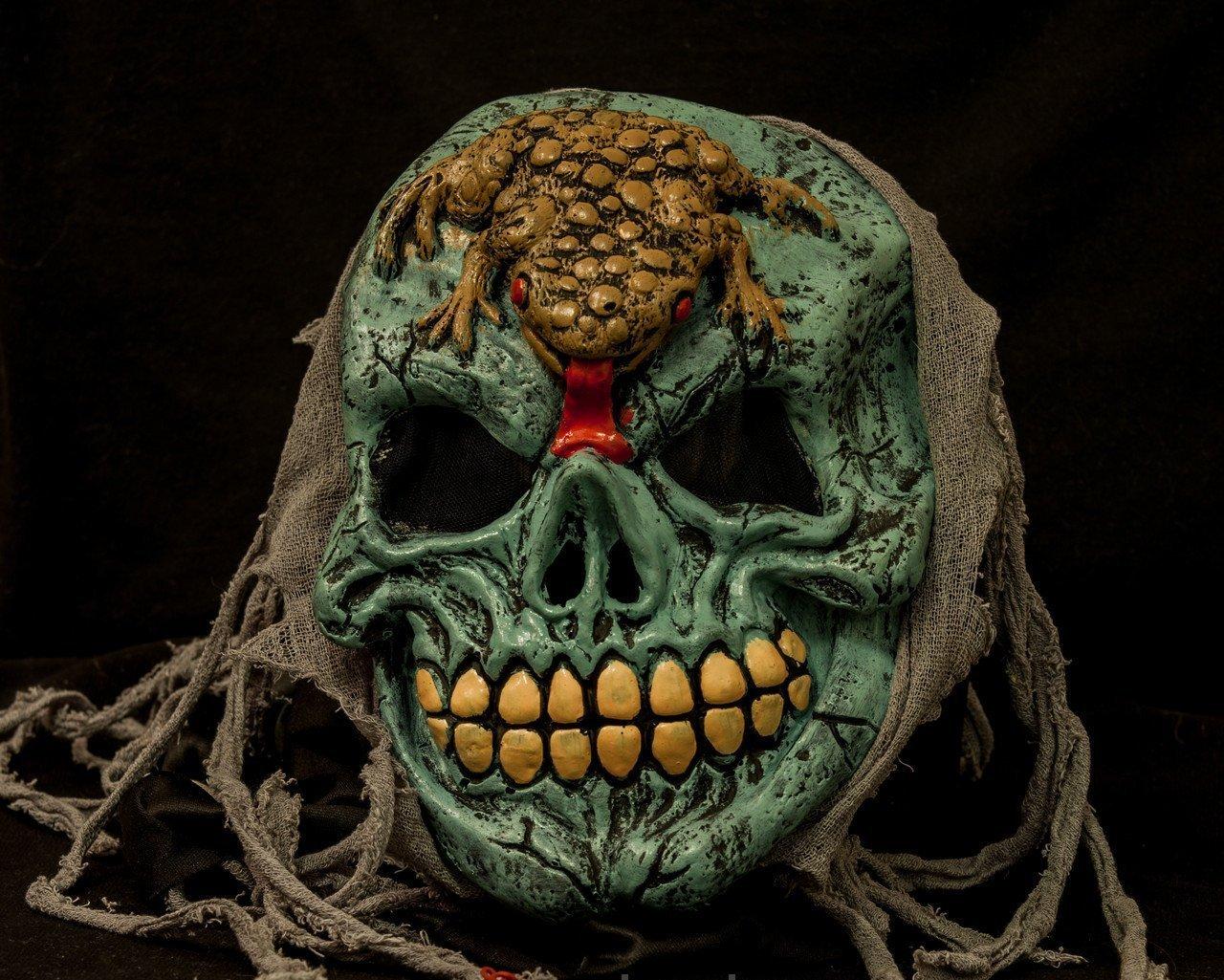 Лягушка на черепе