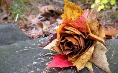 Поделки из осенних и сухих листьев