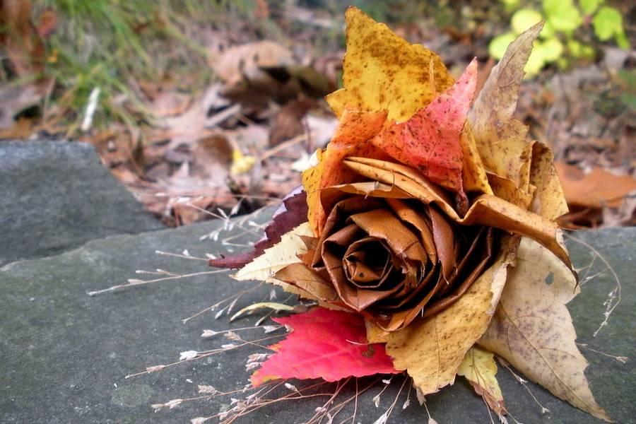 Поделки из листьев своими руками фото осень