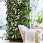 Зимний вертикальный сад