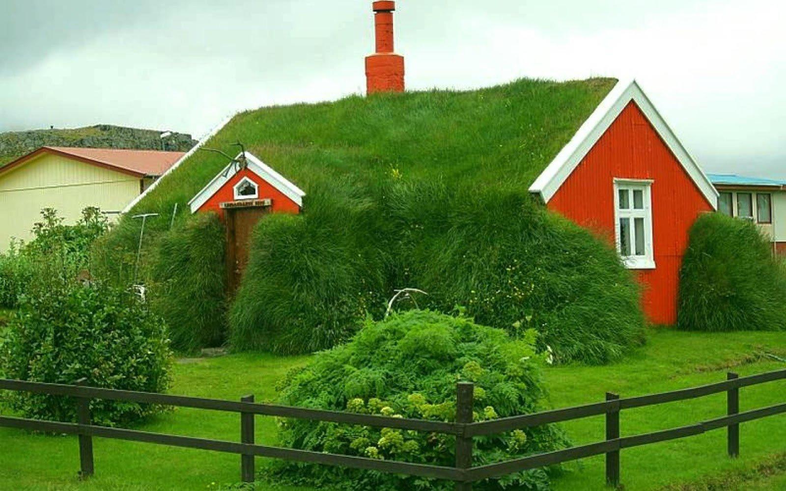 Оформление крыши травой