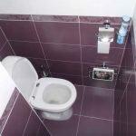 Варианты отделки туалета плиткой
