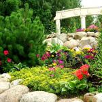 Альпийский сад