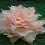 Шикарная роза