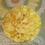 Желтый пион