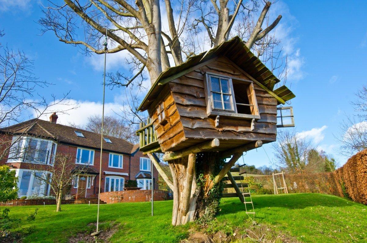 лифтового смотреть картинки дома на деревьях расположить красотку