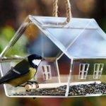 Кормушки-домики из стекла