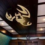 Скорпион на потолке