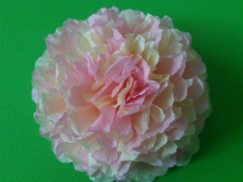 мощные, из каких салфеток делать цветы пионы фото таком деле важно