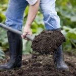 Перекапывать почву