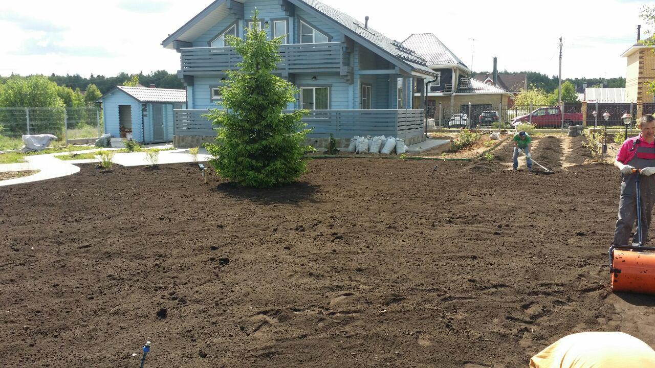 Подготовка участка для газона