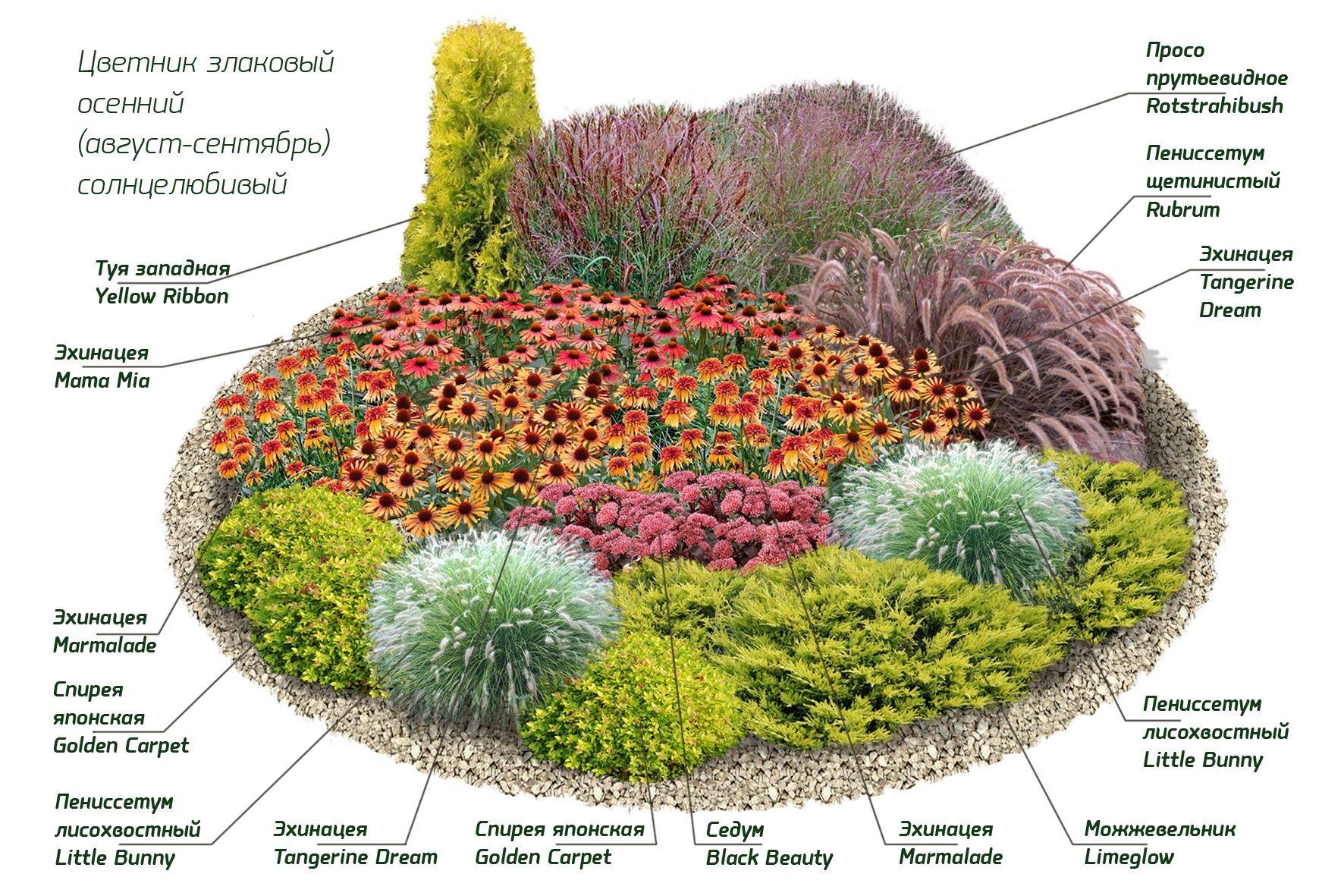 Схема круглой цветочной клумбы