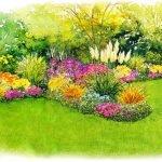 Схема посадки клумбы непрерывного цветения