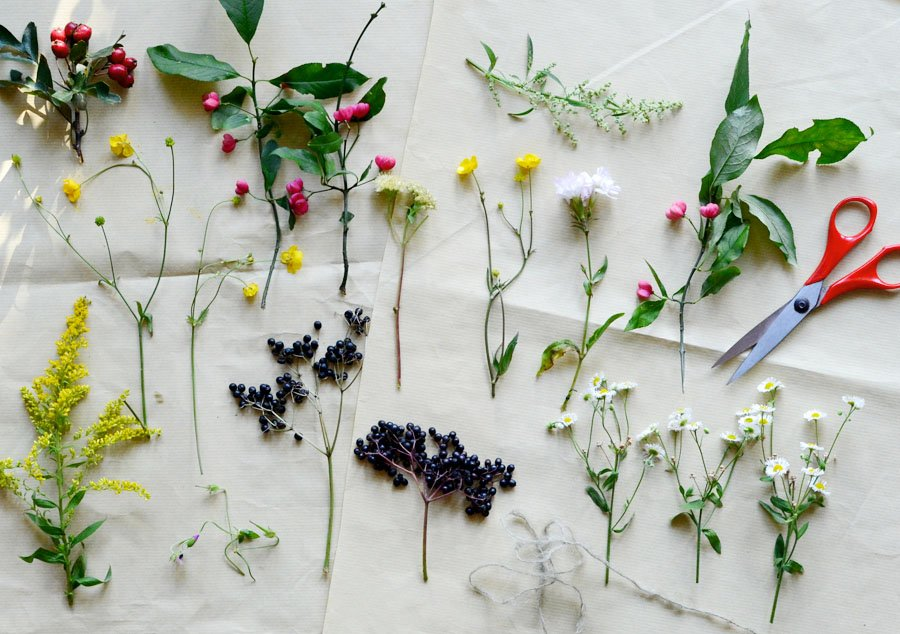 Естественная сушка растений