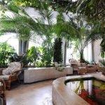 Плетенные кресла среди растений