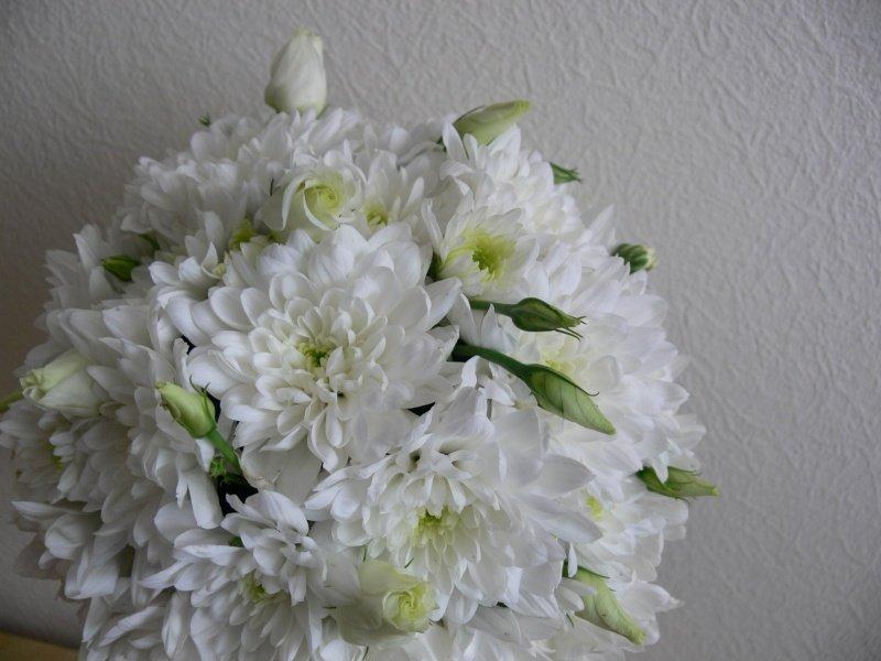 Топиарий изхризантем