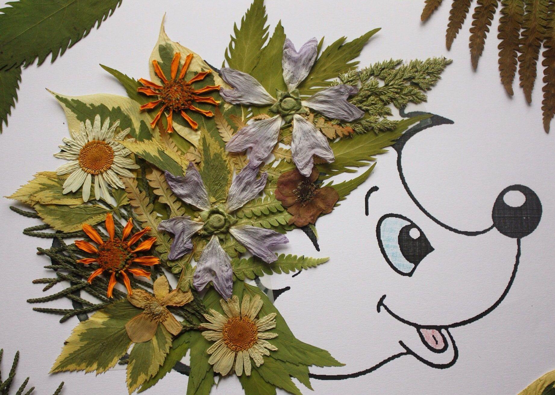Картинки подделки из растений