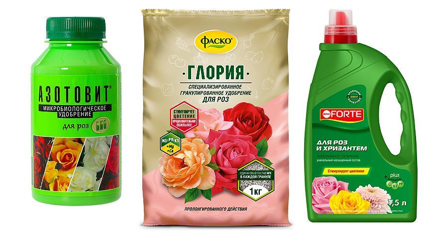 Подкормка для роз