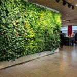 Зеленая стена в интерьере