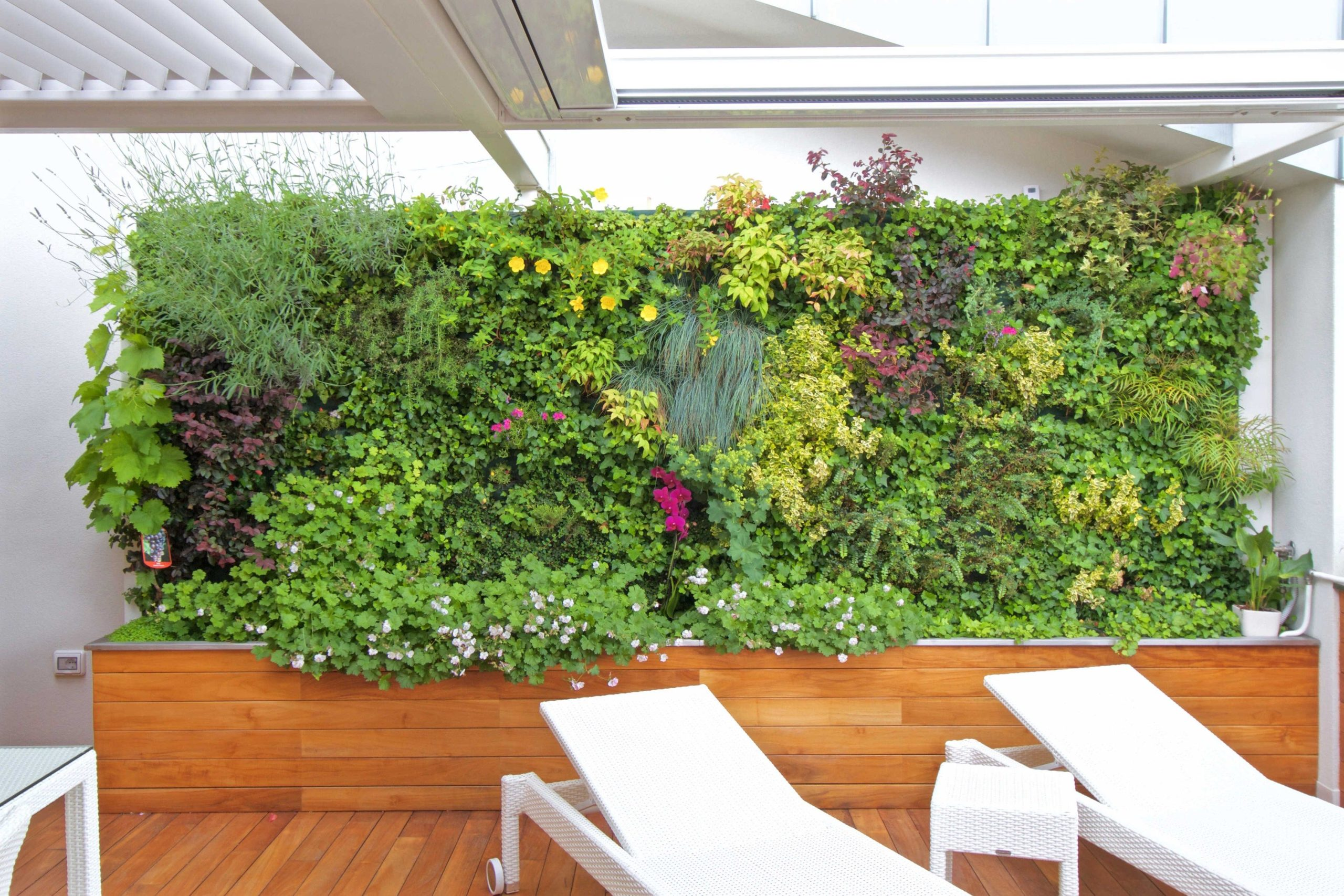 Внутренний вертикальный сад