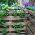 Паллеты для вертикального сада
