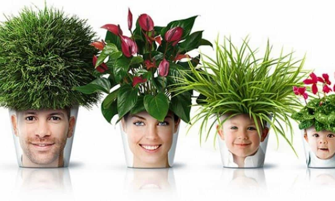 Семейные цветочные горшки
