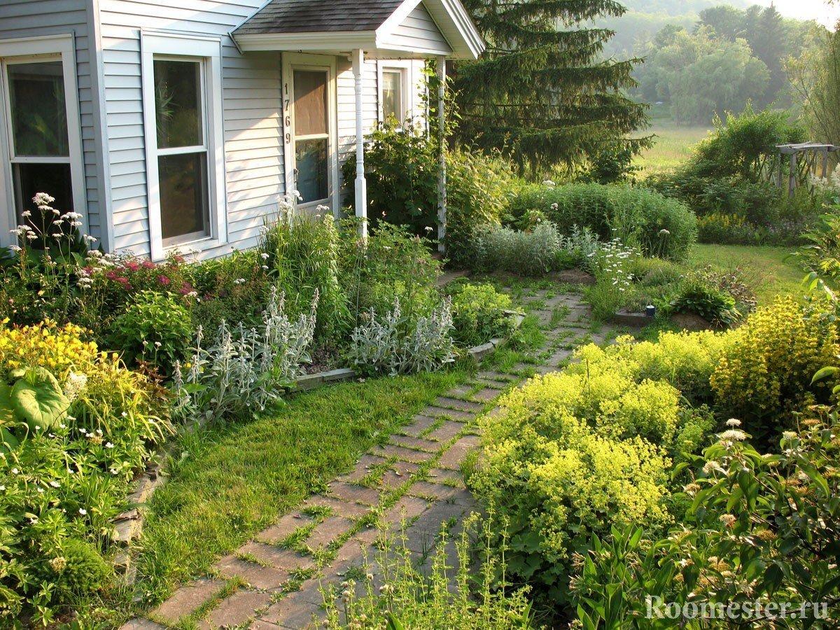 Дизайн садового участка своими руками фото