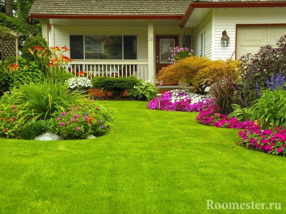 Яркие цветы на зеленом газоне
