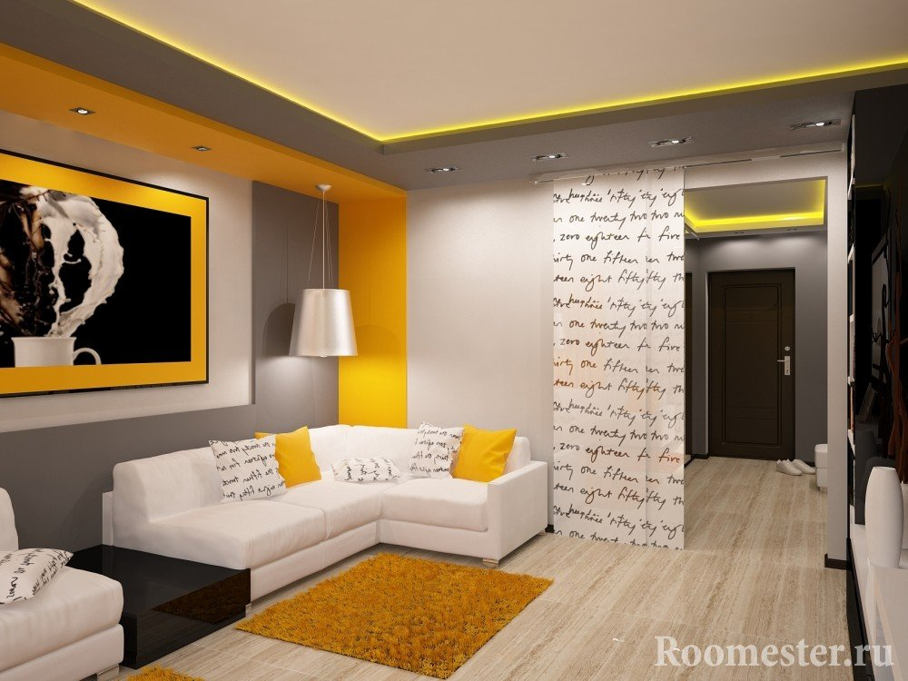 Раздвижные перегородки в гостиной от прихожей