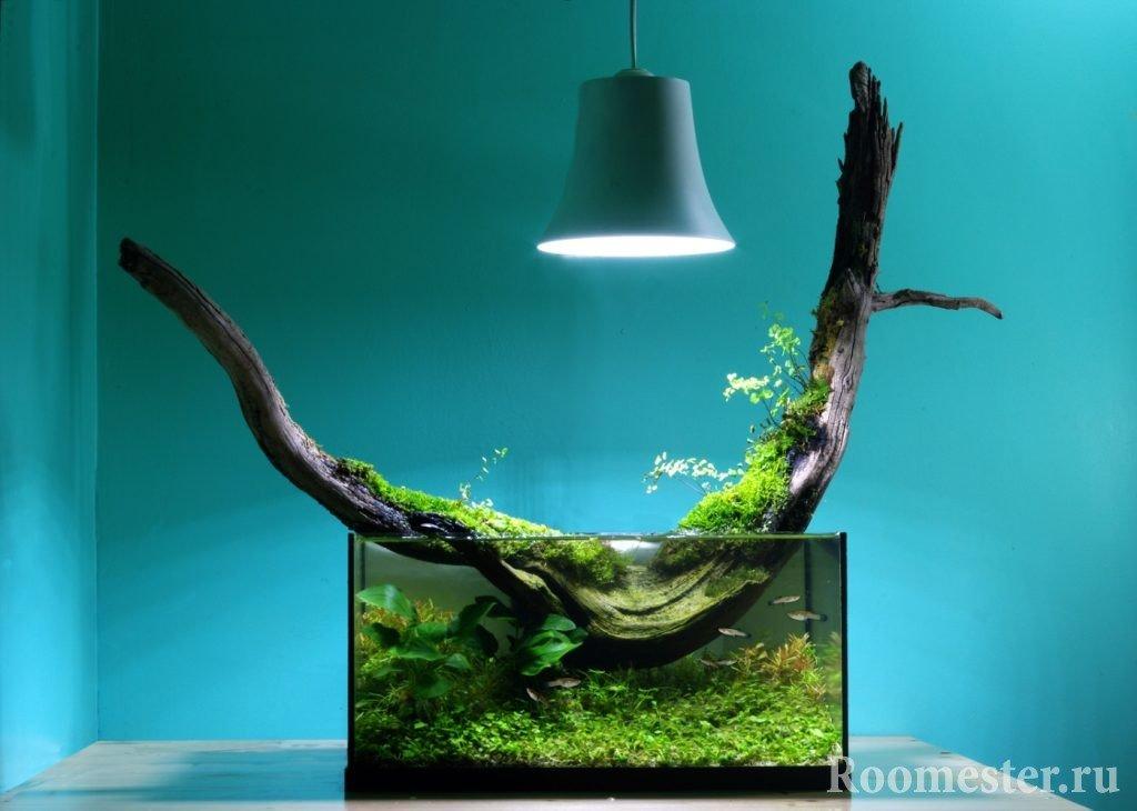 Коряга - украшение для аквариума
