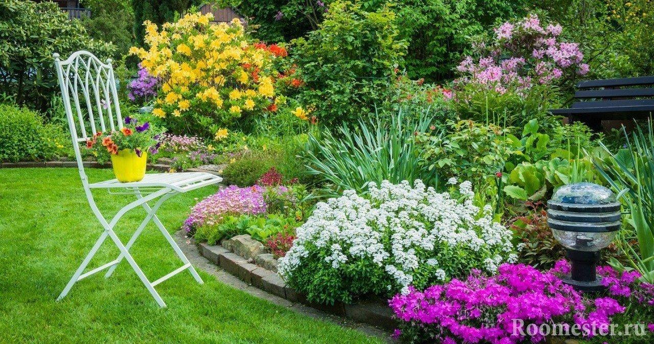 Фото красивых цветочных клумб на даче своими руками 56