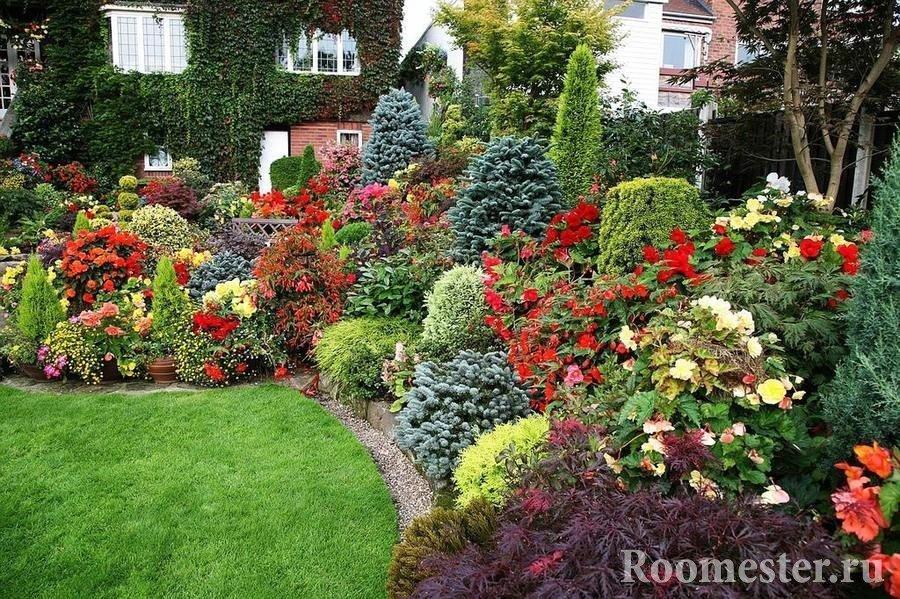 Разнообразные цветы и кустарники