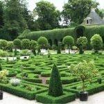 Сад в виде лабиринта из кустарника