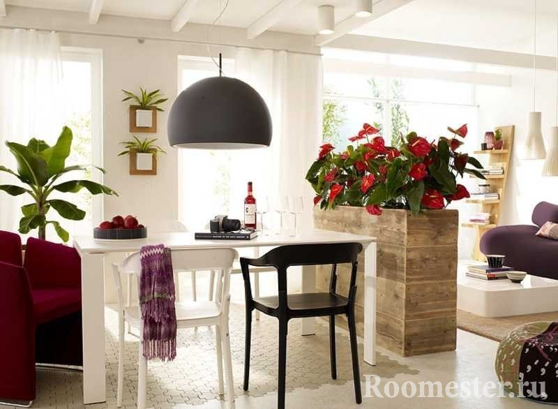 Цветы на кухне у стола