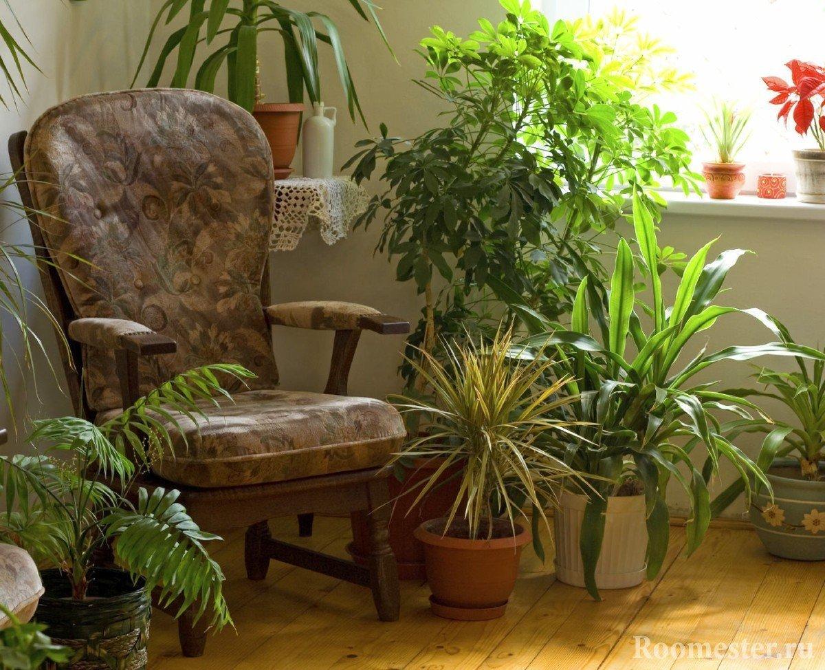 Кресло рядом с цветами
