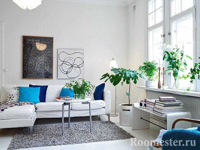 Комнатные цветы в белом интерьере