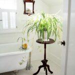 Цветок на подставке в ванной