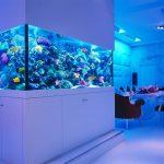 Столовая с аквариумом