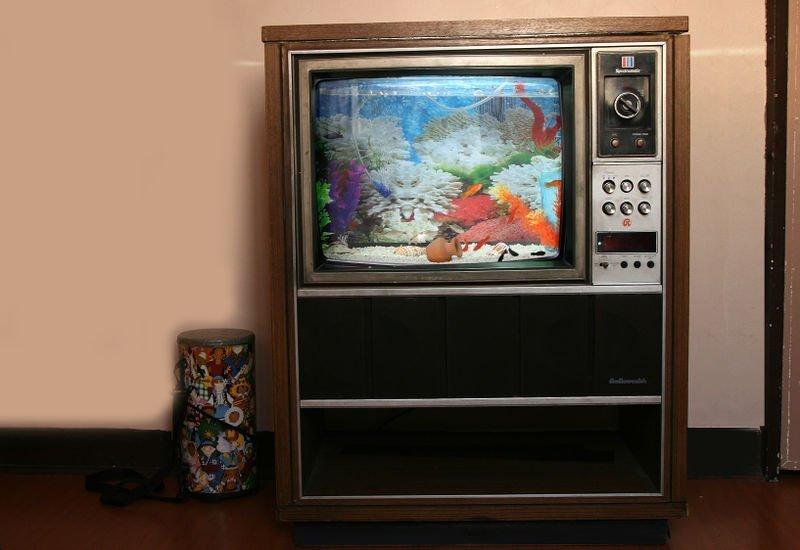 Аквариум под телевизор