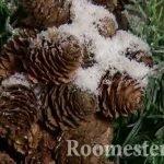 Шишки с декоративным снегом