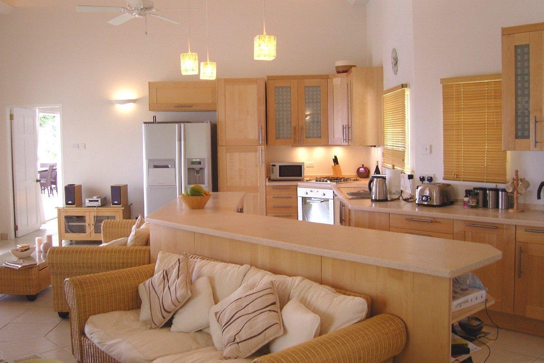 Кухня-студия с совмещенной планировкой