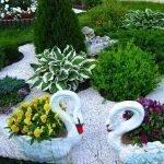 Лебеди в цветнике