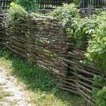 Забор из веток