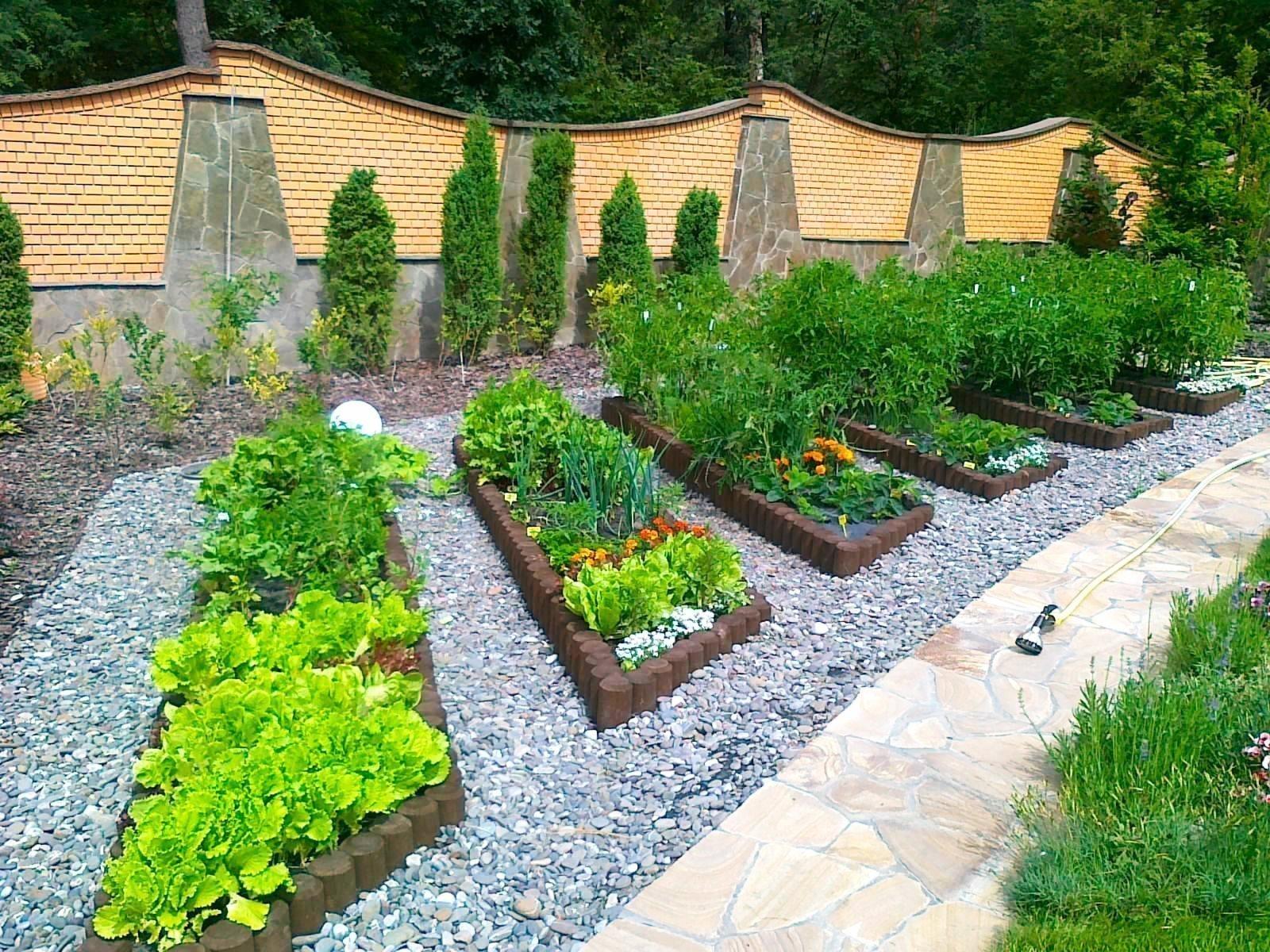 Красивые огород своими руками фото