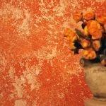 Оранжевые цветы на фоне стены